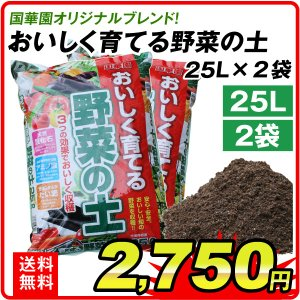 培養土 土 送料無料 おいしく育てる野菜の土・25L 2袋1組 園芸用土|kokkaen