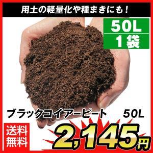 ブラックコイアーピート 50L 1袋1組|kokkaen
