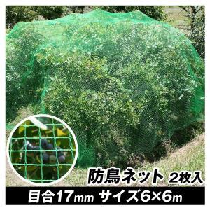 防鳥 鳥よけ 丈夫な防鳥ネット 6×6m 2枚1組|kokkaen