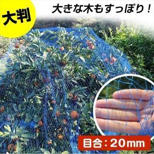 防鳥 鳥よけ 防鳥ネット すっぽり果樹用バードネット 4m×4m|kokkaen