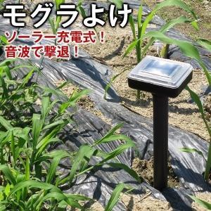 モグラ音波撃退器 モグラよけ モグラさらばイージー(ソーラー式) 2個1組 退治 忌避 対策|kokkaen