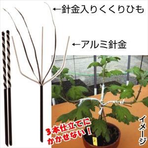 菊作り用品 三本立誘引具 3本1組 国華園|kokkaen