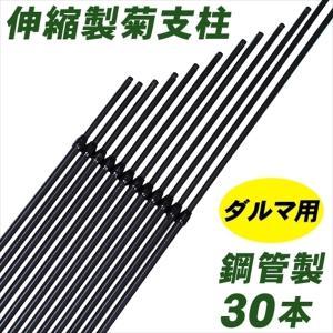 支柱 鋼管製ダルマ菊支柱 30本1組 菊栽培用 国華園|kokkaen