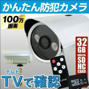 お手軽防犯カメラ 高画質・TVに繋ぐ簡単防犯カメラ(SDカード32GB付) 1個 100万画素 簡単設置|kokkaen