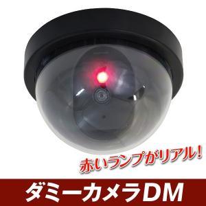 防犯 ダミーカメラDM 2個1組|kokkaen
