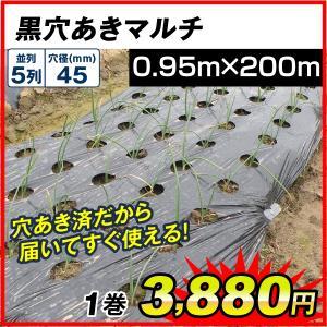 ●商品情報 サイズ豊富!植え付け用穴付きで便利! ●厚さ(約) 0.02mm ●サイズ 幅:0.95...