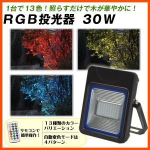 RGB投光器30W 1個 kokkaen