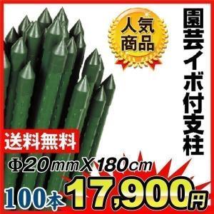 園芸支柱 支柱 農業用支柱 Φ20mm×180cm 100本1組 鋼管製 イボ竹|kokkaen