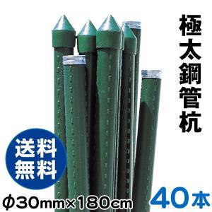 園芸支柱 支柱 極太鋼管杭 30mm・180cm 40本1組 鋼管製 イボ竹|kokkaen