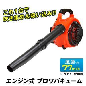 エンジン式 ブロワバキューム 1台 ブロワー ブロア 落葉 枯れ葉 強力 集塵 吸引 掃除 清掃 家庭用 庭 公園 国華園|kokkaen