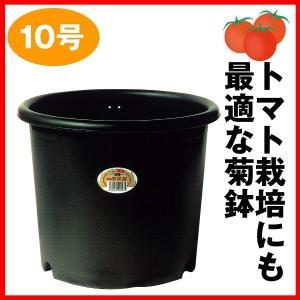 鉢 植木鉢 トマト栽培にも最適な国華園菊鉢10号 1個 国華園|kokkaen