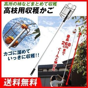 お庭の柿採りバスケット 1台 高枝用収穫かご 最長268cm 国華園|kokkaen