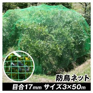 防鳥 鳥よけ 丈夫な防鳥ネット(3m×50m) 1巻組 国華園|kokkaen