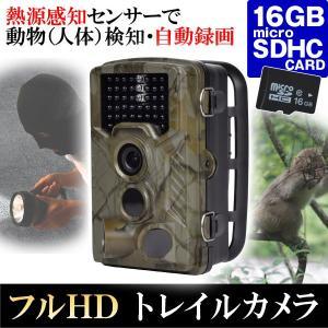 防犯カメラ トレイルカメラ (SDカード16GB付) 1個 送料無料 屋外 屋内 防水 防塵 乾電池 800万画素 フルHD 熱感知 赤外線センサー micro SDカード 録画 1080P|kokkaen