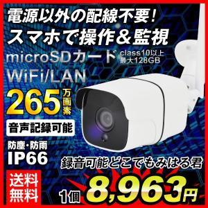 防犯カメラ 監視 200万画素 どこでもみはる君 (Wi-Fi IPカメラ) 無線式 防雨 防塵 暗視 屋外用 家庭用 上書き録画 フルHD 動体検知 スマホ 配線不要 ワイヤレス
