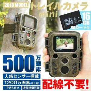 防犯カメラ 監視 トレイルカメラmini (16GBSDカード付) 屋外 屋内 防水 防塵 乾電池 500万画素 フルHD 熱感知 赤外線センサー 上書録画 太陽光 日本語説明書|kokkaen
