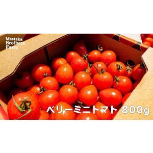トマト フルーツミニトマト 心の実 ベリーミニ 1.6kg(1箱)