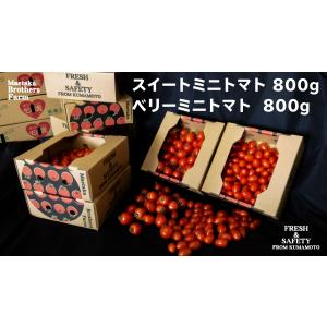 トマト フルーツミニトマト 心の実 スイート&ベリー 1.6kg(2箱/1組)