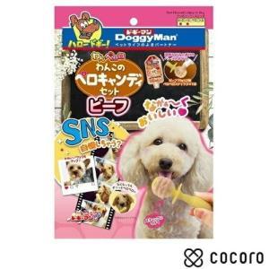 訳あり 在庫処分 ドギーマン わんペロロ わんこのペロキャンディセット ビーフ 70g 犬 おやつ ◆賞味期限 2020年1月|kokoro-kokoro