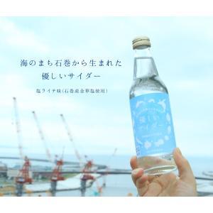 海のまち石巻から生まれた優しいサイダー(8本セット) kokosei100