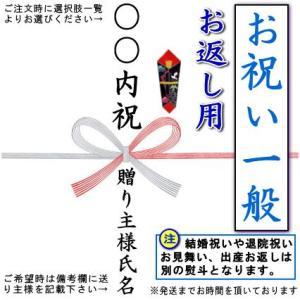 一般のお祝い、お返し用のし 蝶結び熨斗 1枚 ご注意ください  結婚祝いのお返しや出産内祝い、退院祝いや  お見舞いのお返しはこの熨斗ではありません。 |kokouki