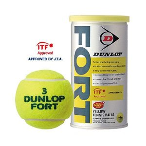 ダンロップ DUNLOP 硬式テニスボール FORT フォート 2P缶入×30 送料無料|kokusai-shop