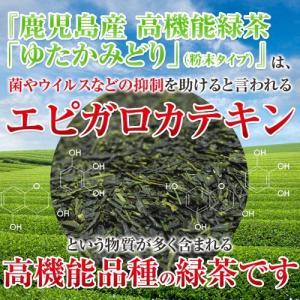 ためしてガッテン エピガロカテキン ゆたかみどり 80g 茶葉タイプ komaki-tea 04