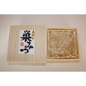 巣みつ(アカシア蜂蜜) 訳あり品|komatsu888