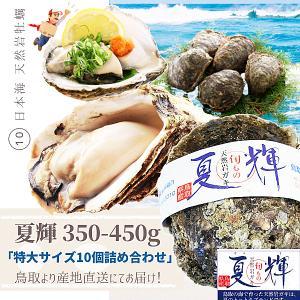 天然岩牡蠣 (活)夏輝牡蠣 350g-450g前 10個セットブランド 夏輝牡蠣 鳥取産 カキ 刺身...