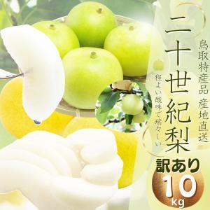 梨の本場鳥取から甘くて美味しいナシ(訳ありご自宅用)みずみずしくてシャリシャリな鳥取県特産二十世紀梨...