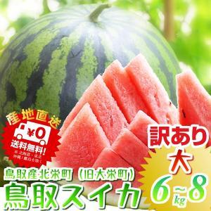 鳥取 スイカ すいか プレミアムドバイ西瓜(優品 ご自宅用)...