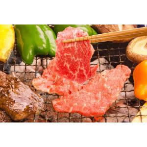 鳥取県産 焼肉セット 1kg(3〜5人前) 牛肉 豚肉 鶏肉 焼き肉 バーベキュー BBQ ファミリーセット たっぷり1キロ 送料無料|komatsuya-plan|04