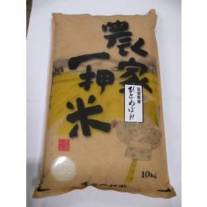 ひとめぼれ(10K)|kome-hiro