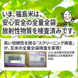 米 お米 20kg 福島県産 ひとめぼれ 29年産 送料無料 ふくしまプライド。体感キャンペーン(お米)|kome-toukoku|02