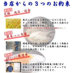米 お米 20kg 福島県産 ひとめぼれ 29年産 送料無料 ふくしまプライド。体感キャンペーン(お米)|kome-toukoku|05