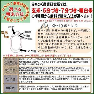 米 お米 20kg 福島県産 コシヒカリ 29年産 送料無料 ふくしまプライド。体感キャンペーン(お米)|kome-toukoku|04