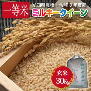 【令和元年度・愛知県豊橋産・送料無料】ミルキークイーン・30kg まとめ買い・減農薬玄米|kome2