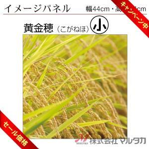 イメージパネル 黄金穂 品番 530703|komebukuro