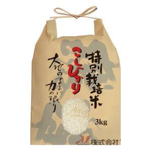 米袋 3kg用 こしひかり 20枚セット KH-0122 特別栽培米こしひかり 百山|komebukuro|02