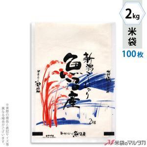 米袋 雲龍和紙 フレブレス 魚沼産こしひかり 山水 2kg用 100枚セット MK-0100|komebukuro