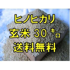 【29年産】 ヒノヒカリ玄米30kg  九州 佐賀県白石産 ...