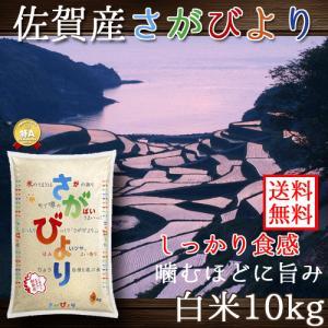 佐賀県産 さがびより 白米 10kg 送料無料 (一部地域除く)|komedonyakuranosuke