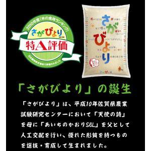佐賀県産 さがびより 白米 10kg 送料無料 (一部地域除く)|komedonyakuranosuke|03