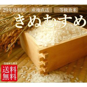 新米 お米 きぬむすめ 島根産 【平成29年産】 検査一等米...