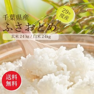 新米 お米 ふさおとめ 千葉産 【平成29年産】 玄米30キ...