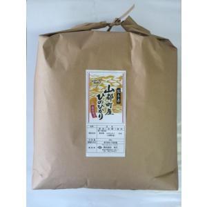 平成30年 玄米 山都町産(旧清和村)ひのひかり 20kg|komehisa-kumamoto|02