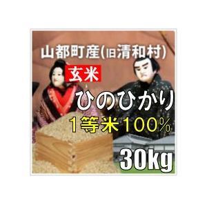 平成29年 玄米 山都町産(旧清和村)ひのひかり 30kg