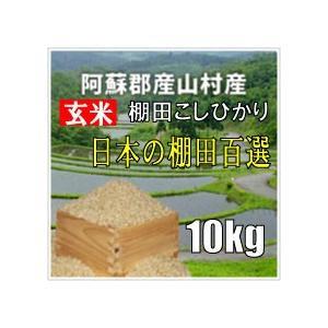 平成28年 玄米 阿蘇産山村産 棚田こしひかり 10kg|komehisa-kumamoto