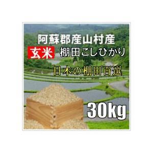 平成28年 玄米 阿蘇産山村産 棚田こしひかり 30kg|komehisa-kumamoto