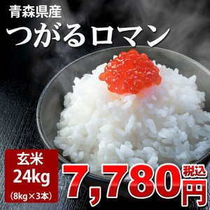 米 24kg お米 白米 玄米 安い 8kg×3袋 玄米(2...